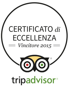 Print_Logo_COE2015_IT trip advisor